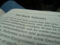 Blick in Nehemia